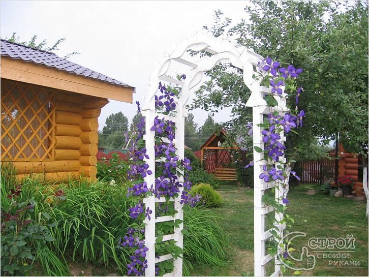 Белая деревянная арка