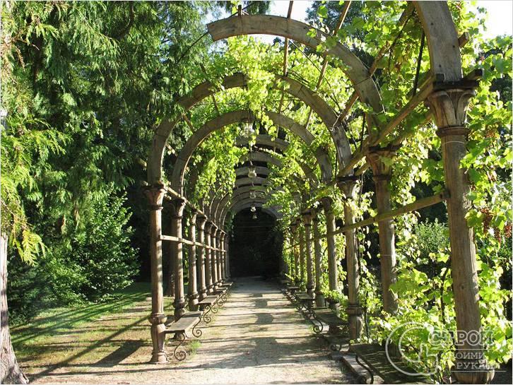 Пергола из дерева — тоннель