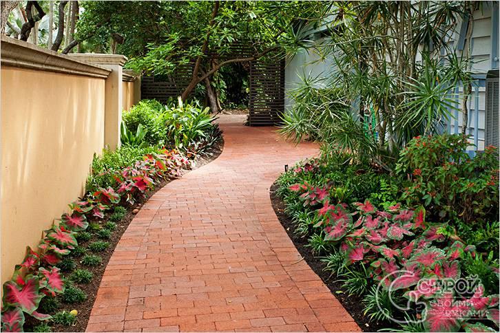 Садовые дорожки должны быть выше уровня грунта