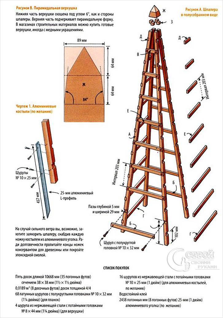 Чертеж пирамидальной шпалеры
