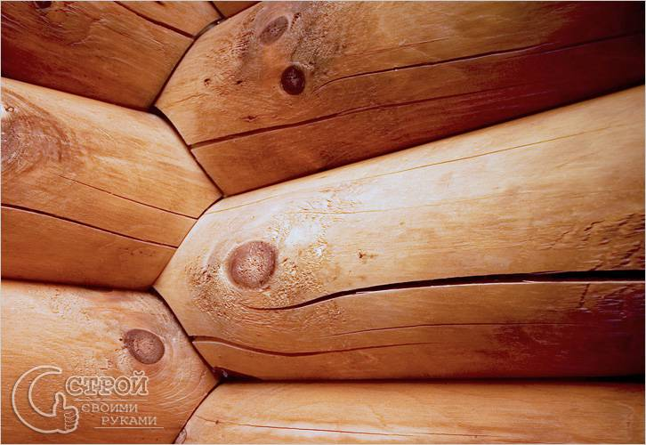 Гнилые венцы и трещины