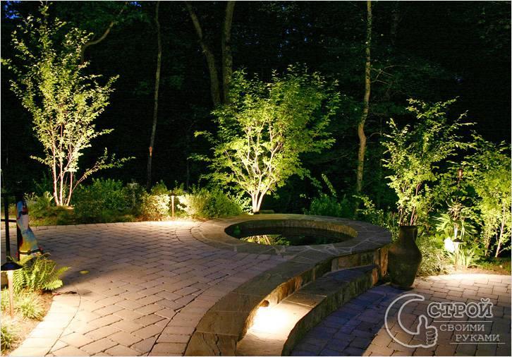 Подсветка деревьев в саду