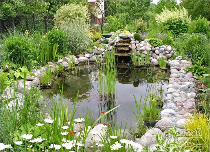 Выбор местоположения и основных параметров пруда